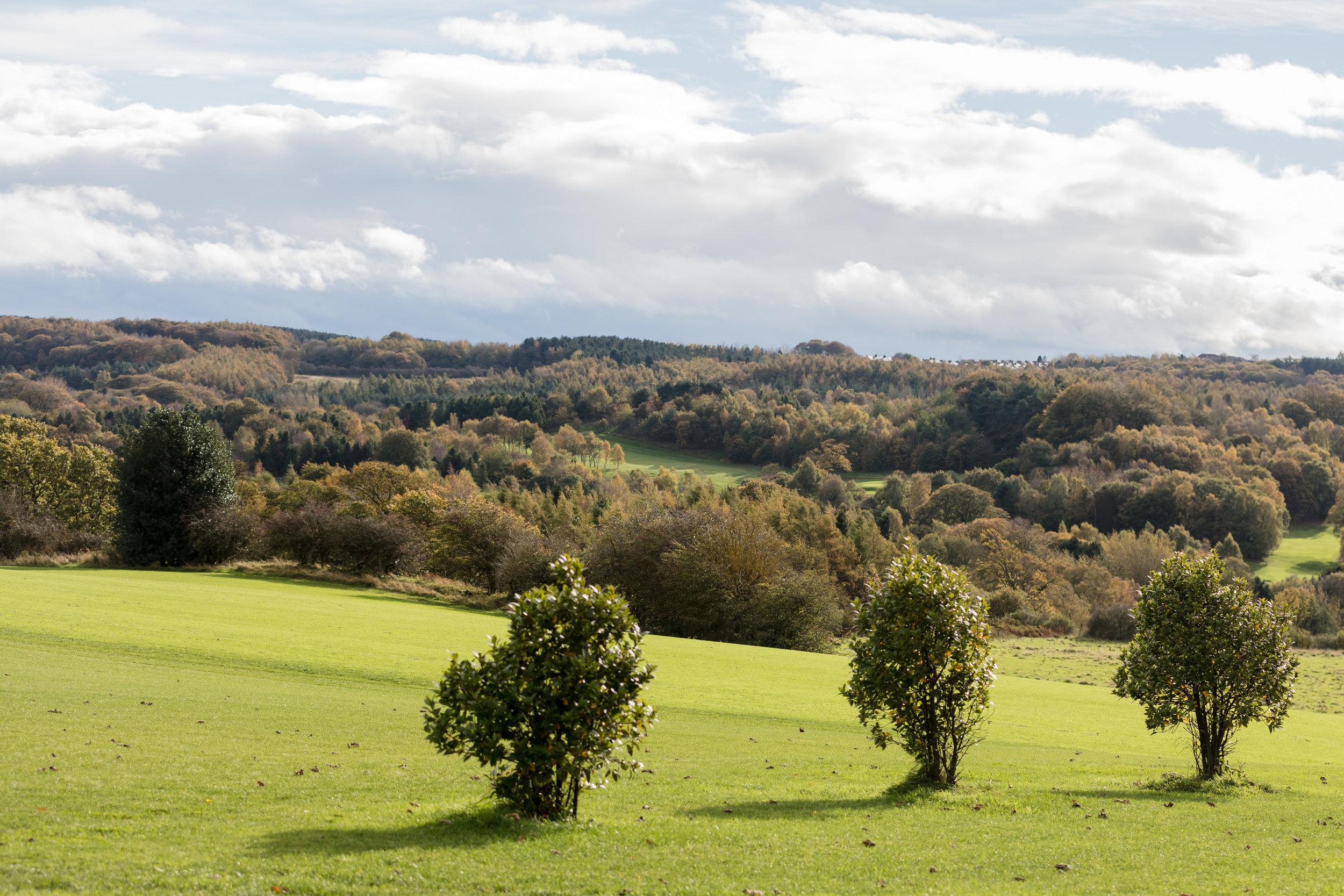 Black Horse Beamish in County Durham.jpg