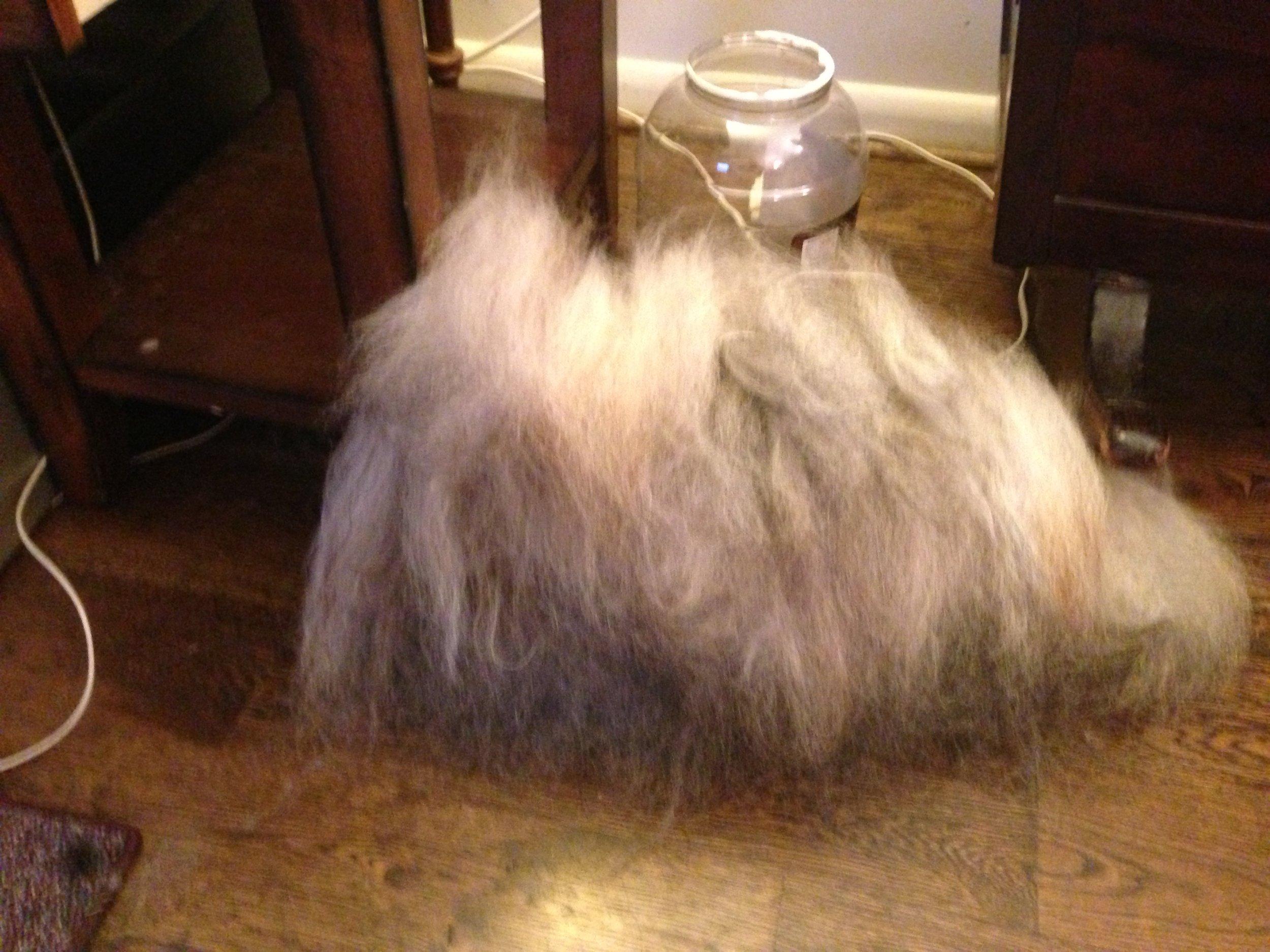 Combed Icelandic Wool