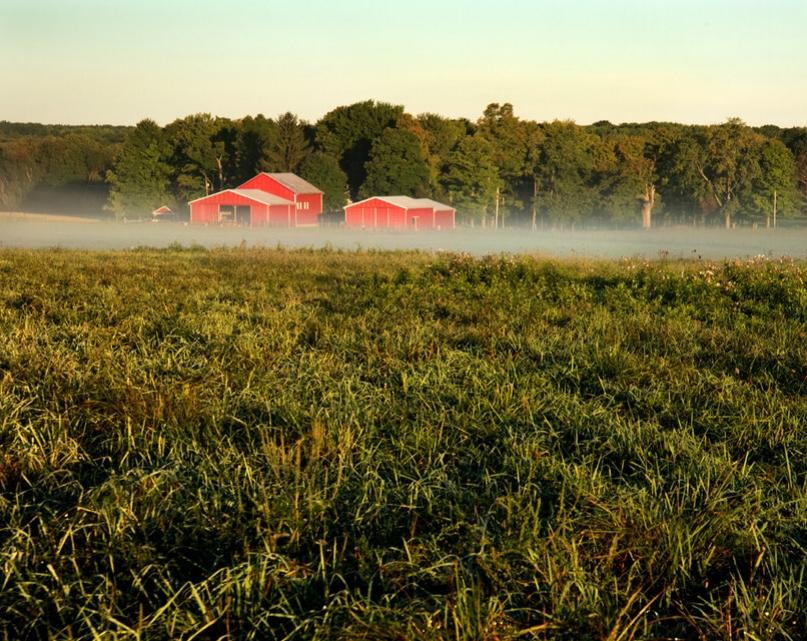 NEO Miller Livestock 1.jpg