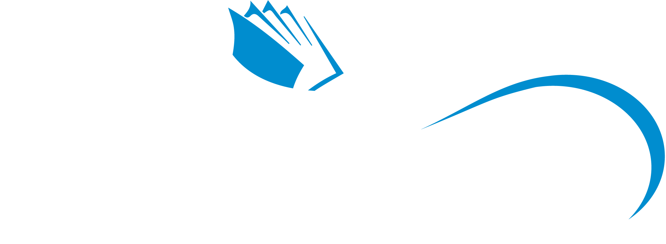 Second Wave - Pantone - Full Logo - White and Blue.png