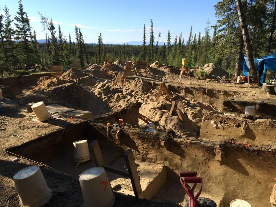 interior alaska - may-june 2014
