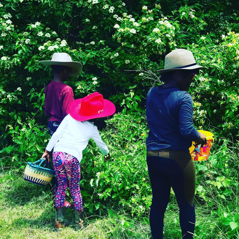 The kids foraging for Honeysuckle.