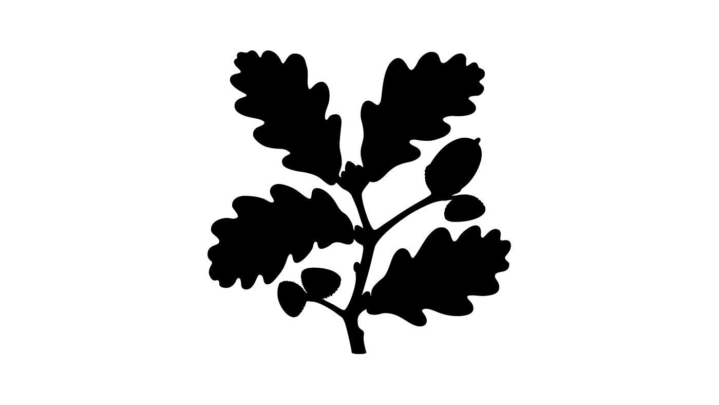 nt_logo.jpg