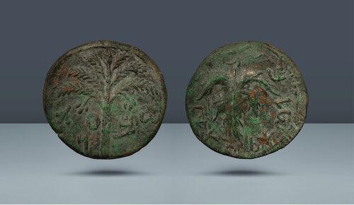 Judaea.  Bar Kochba Savaşı, 3. Yıl MS 132-136.  Tarihsiz, 3. yıl (MS 134-135)
