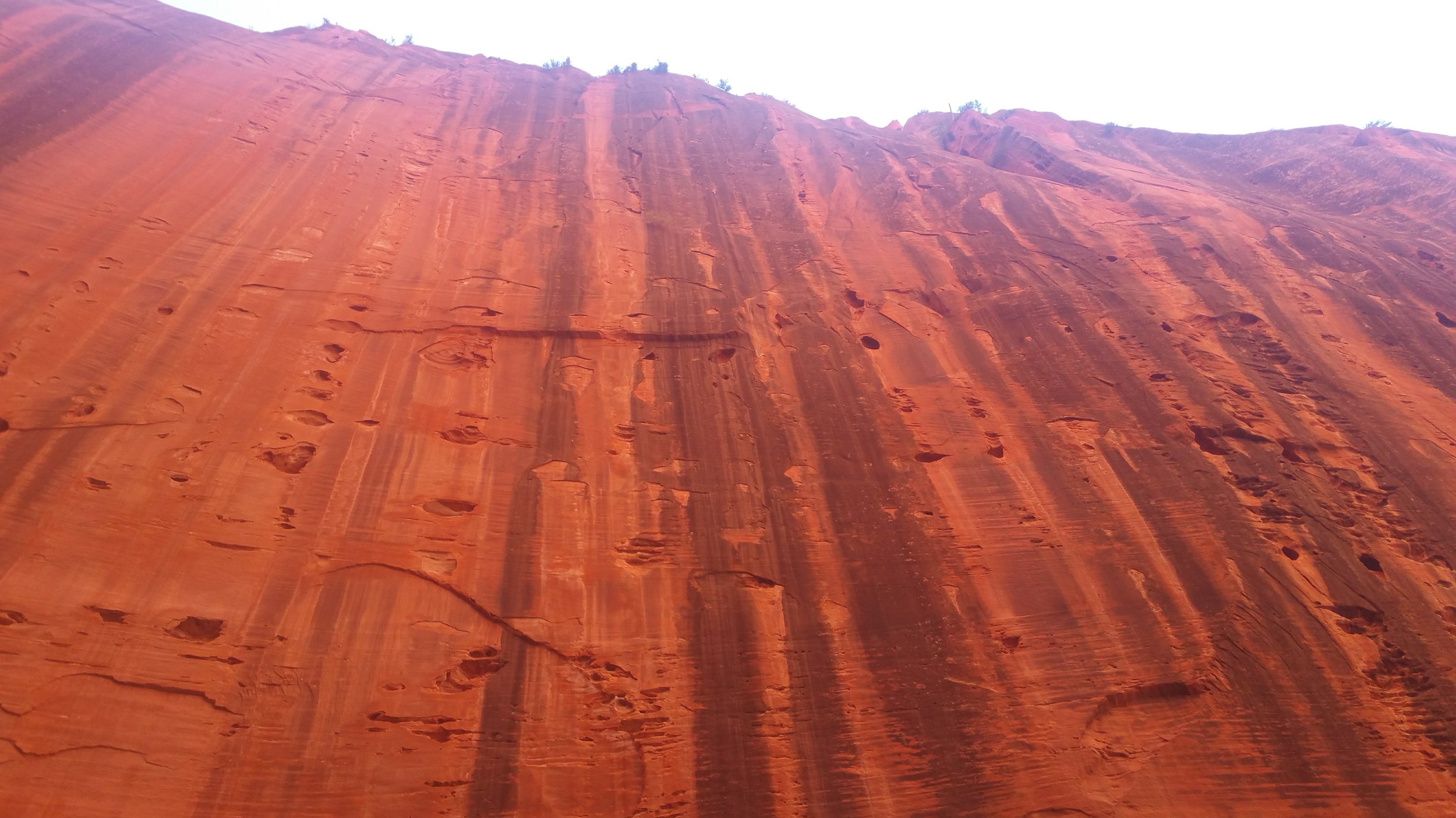Zion Wall by Lawrence Fike.jpg