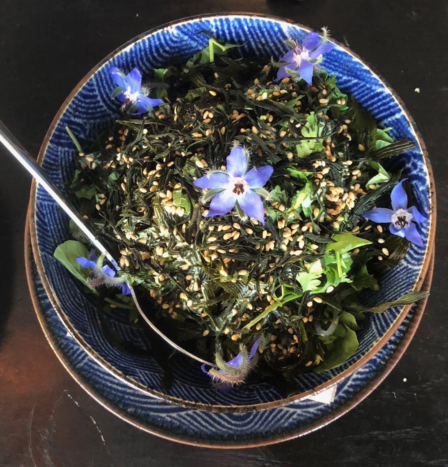 sea vegetable salad - ocean ribbons + kelp noodles / spirulina ginger cream / herbs and cress / house sea palm furikake
