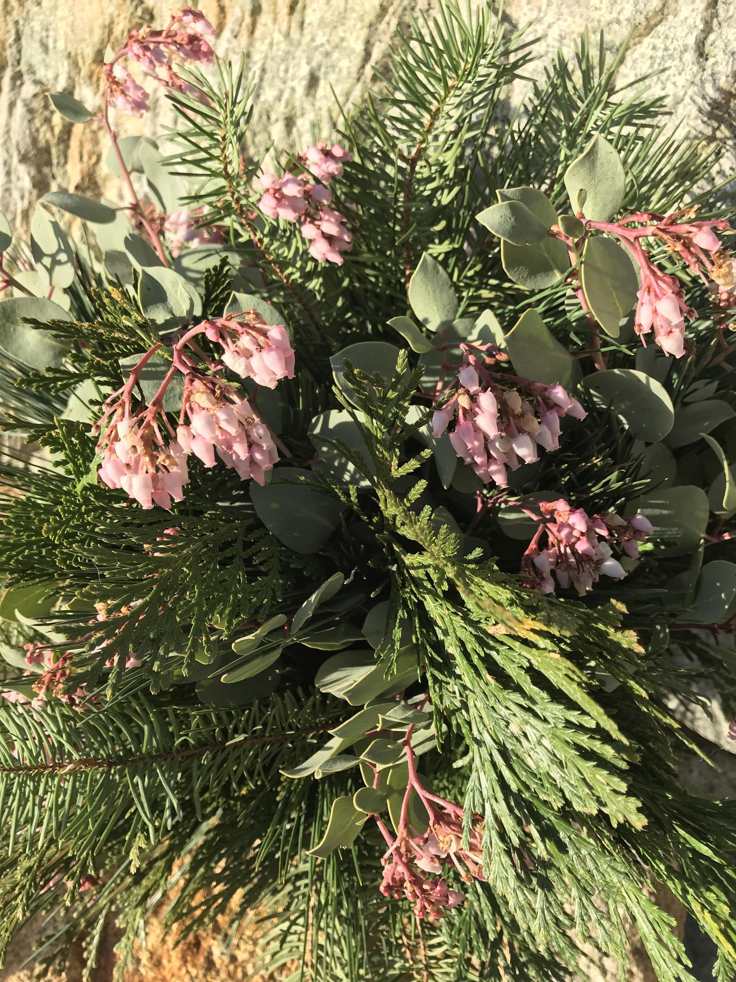 native trees bouquet