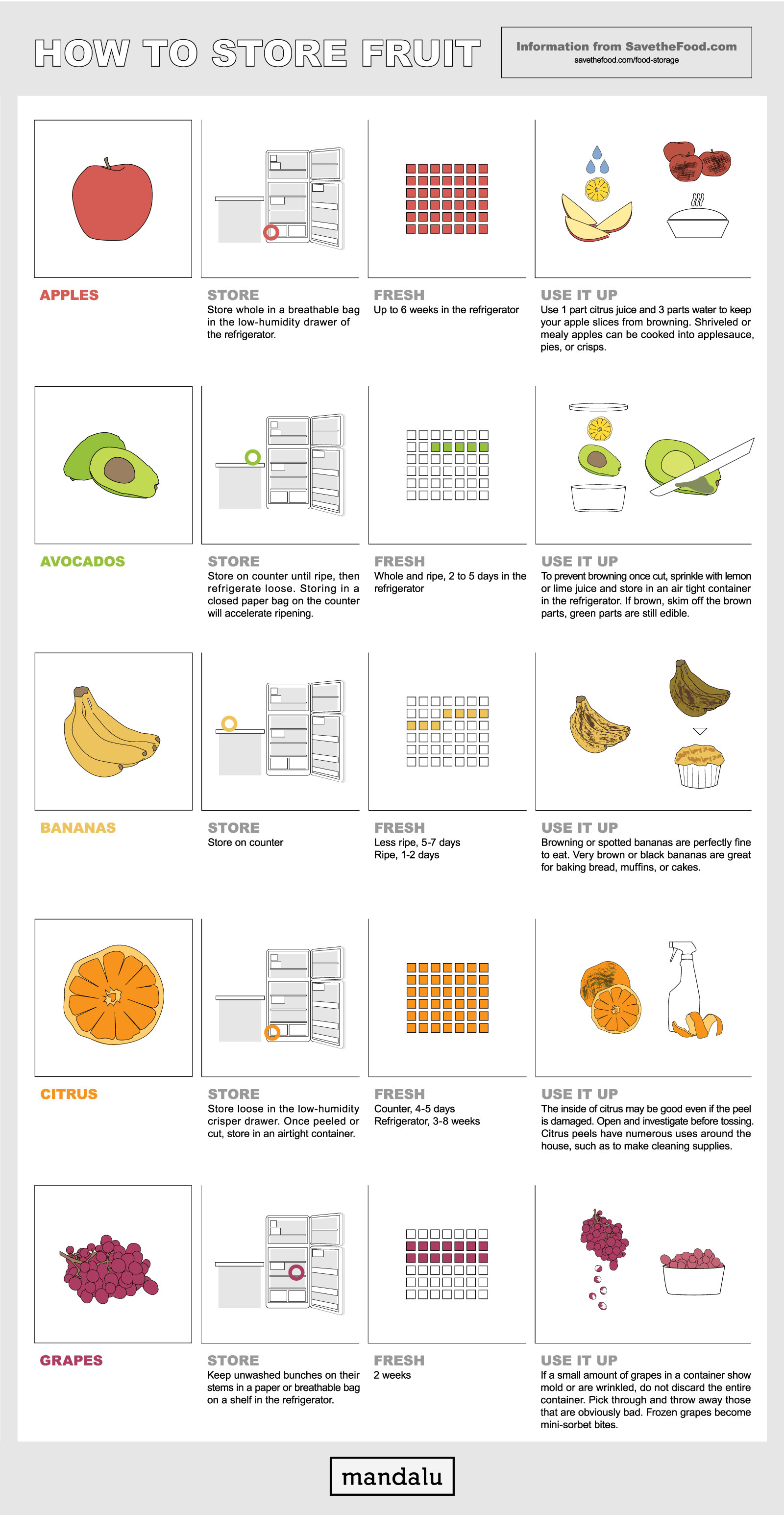 What is an infographic - Save the food