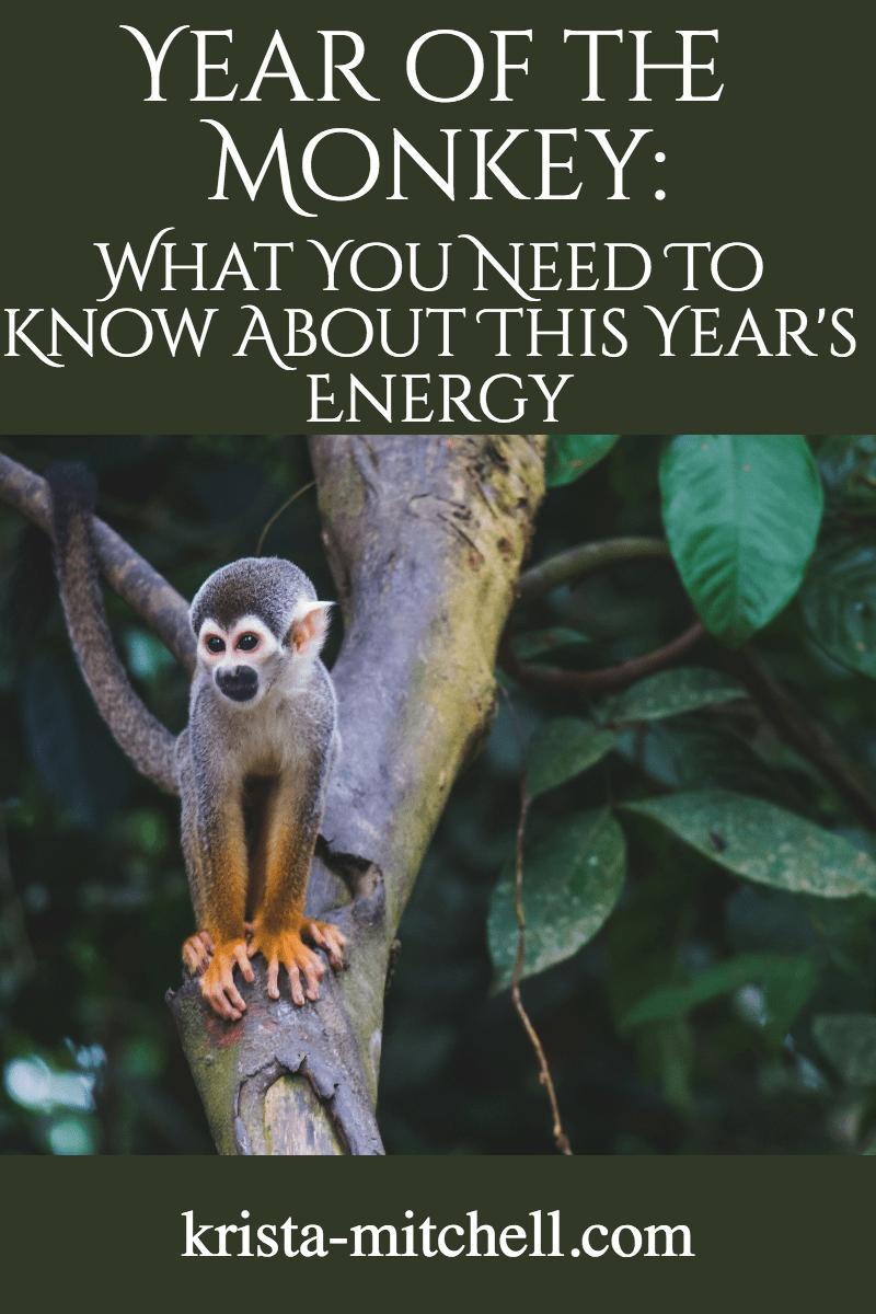 year of the monkey / krista-mitchell.com