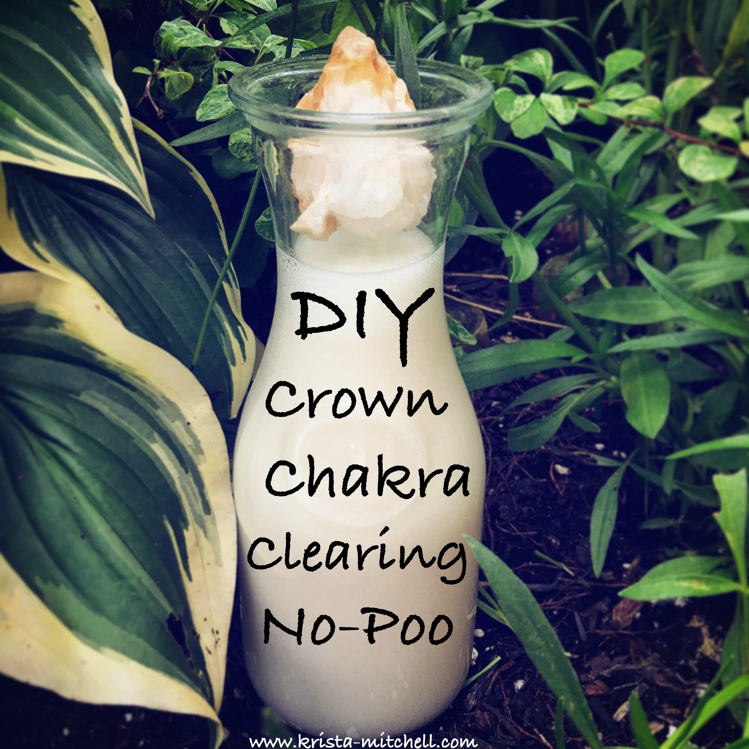 diy crown chakra clearing no poo / krista-mitchell.com