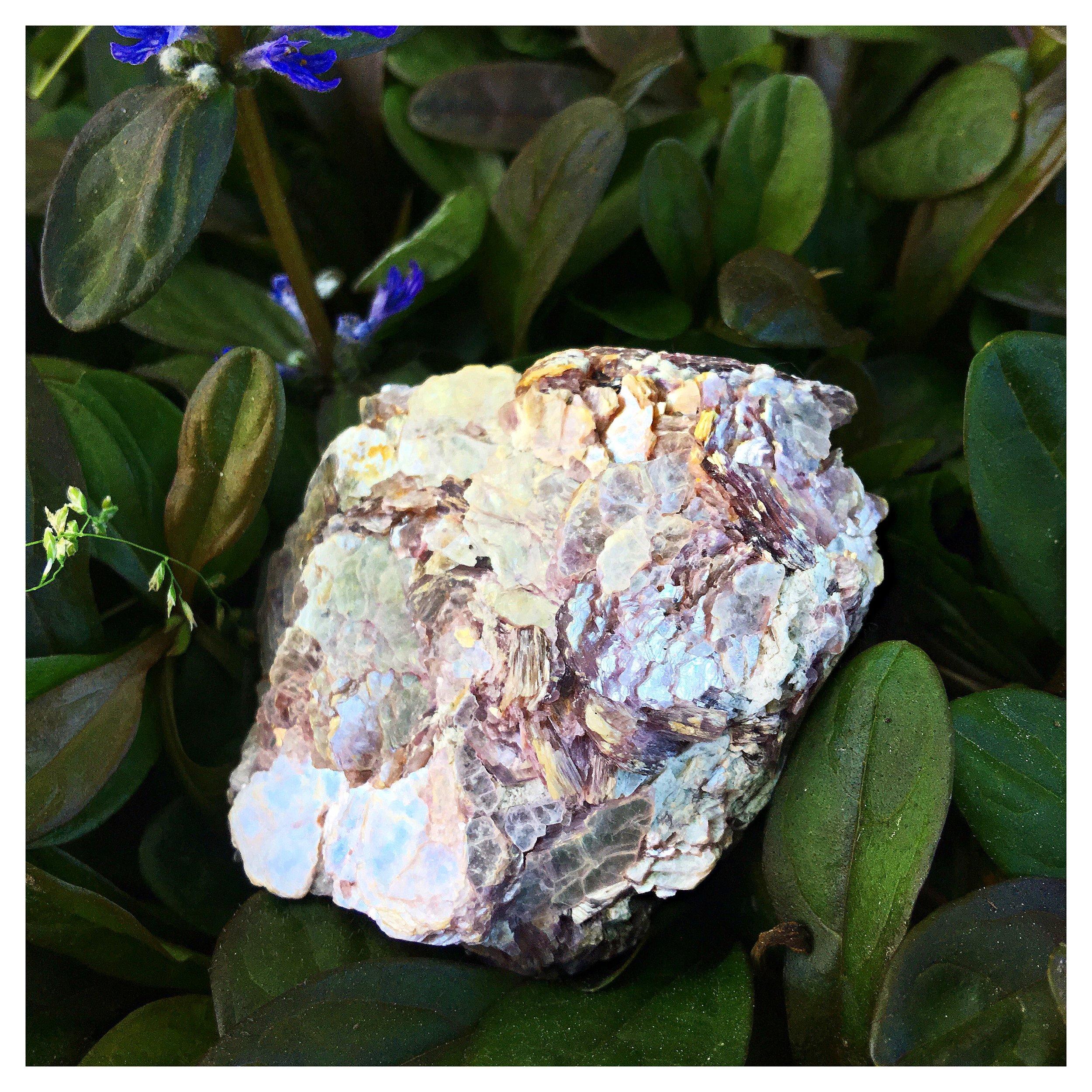 lepidolite / krista-mitchell.com