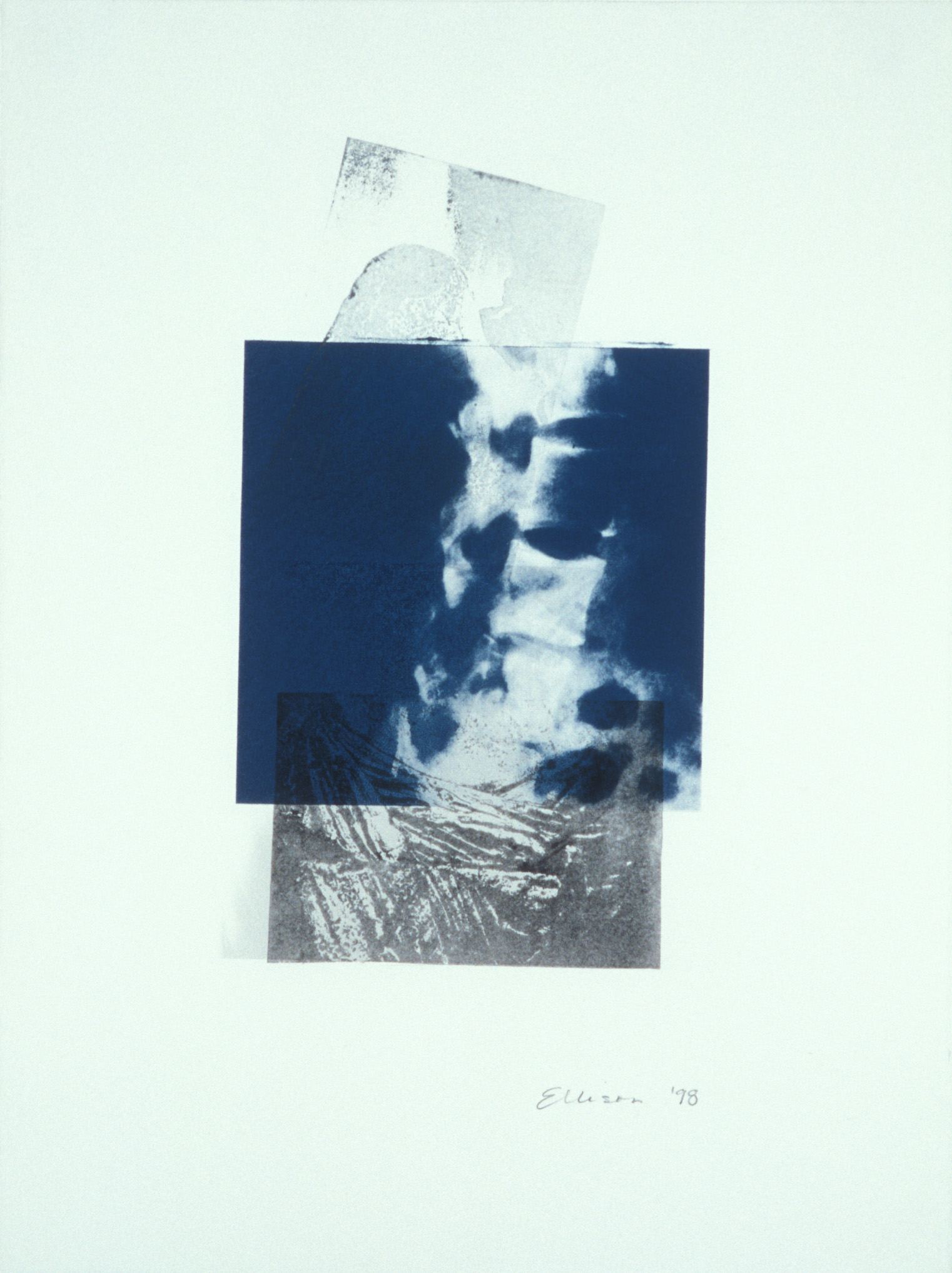 """Stand,"" 2001, monotype with litho and transfer on Rives BFK, 30"" x 22."""