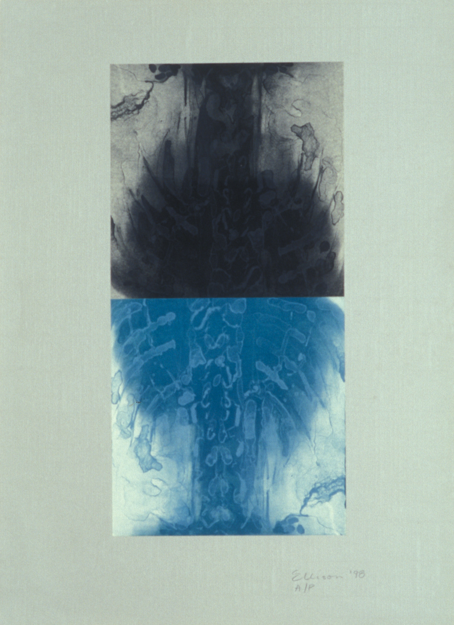 """Double Spine Turquoise,"" 2001, monotype with lithograph chine collé on Roma paper, 28"" x 20."""