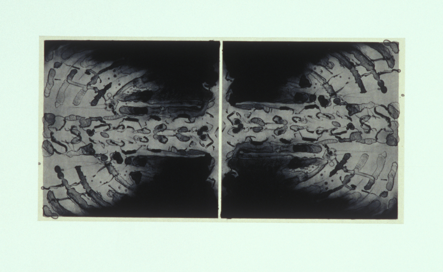 """Verso,"" 2001, monotype with silk tissue-wrapped lithograph on Rives BFK, 22"" x 30."""