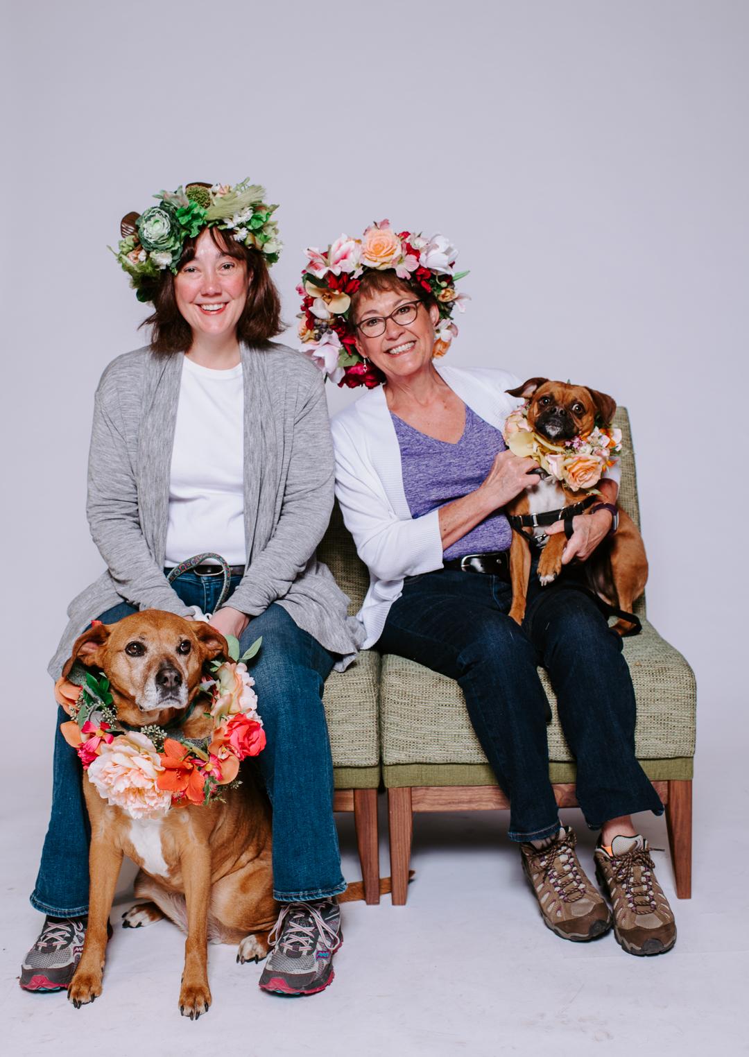 TerraSuraPhotography-DogsofRosedale-Web-8350.jpg