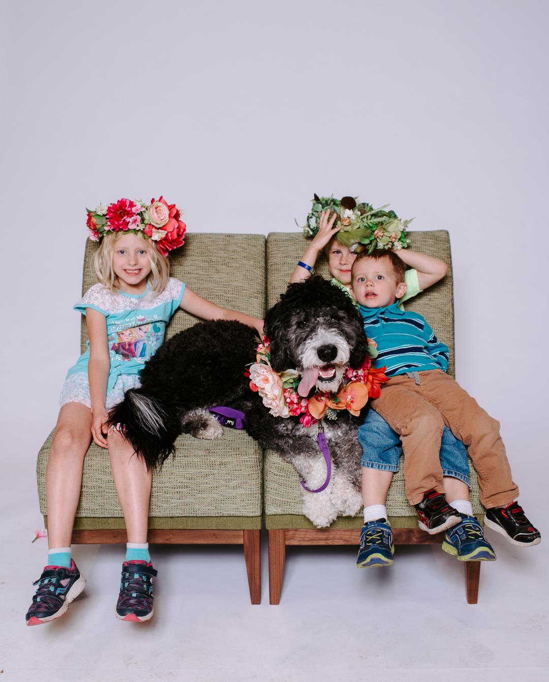 TerraSuraPhotography-DogsofRosedale-Web-8415.jpg
