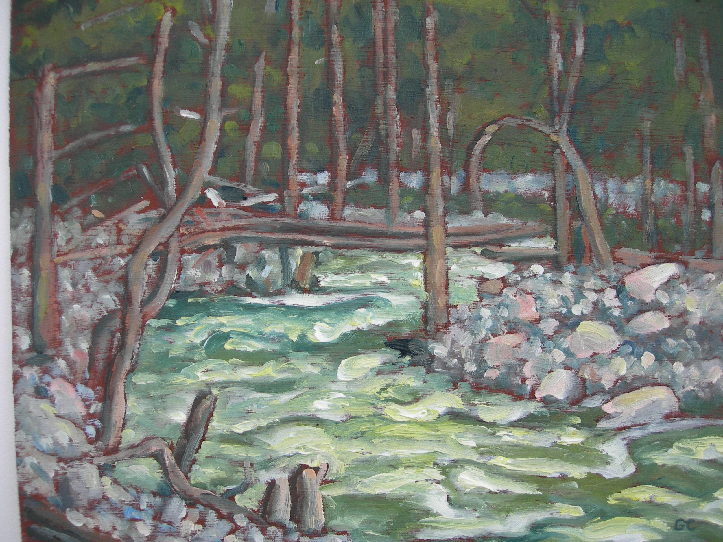 Tweedsmuir South Provincial Park Creek