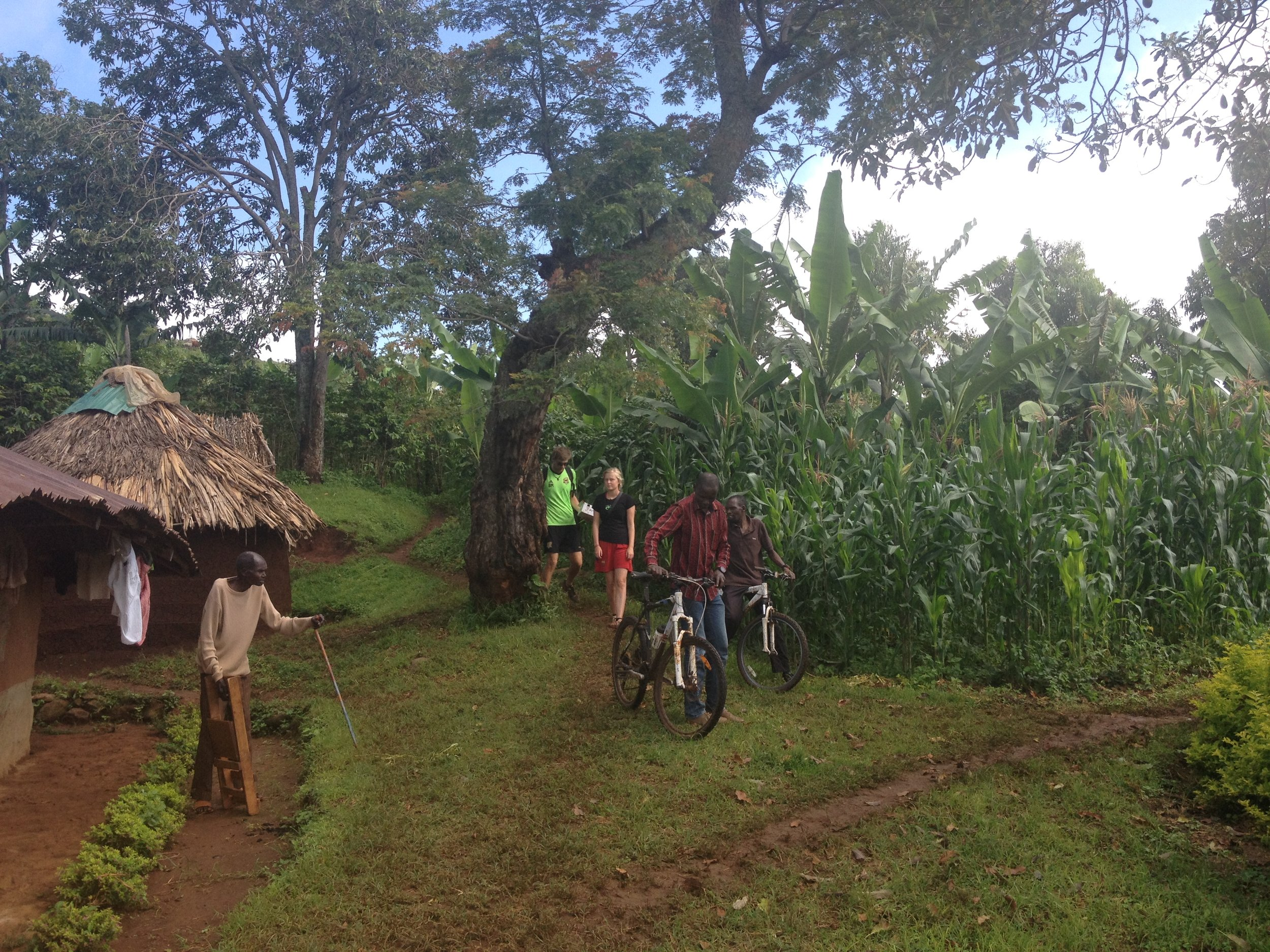 Sipi Falls village tour