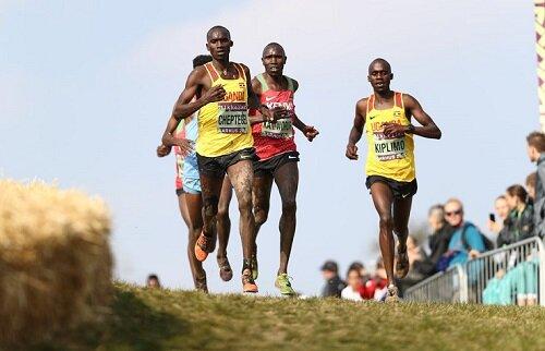 Cheptegei wins World Cross Country Championships Aarhus.jpg