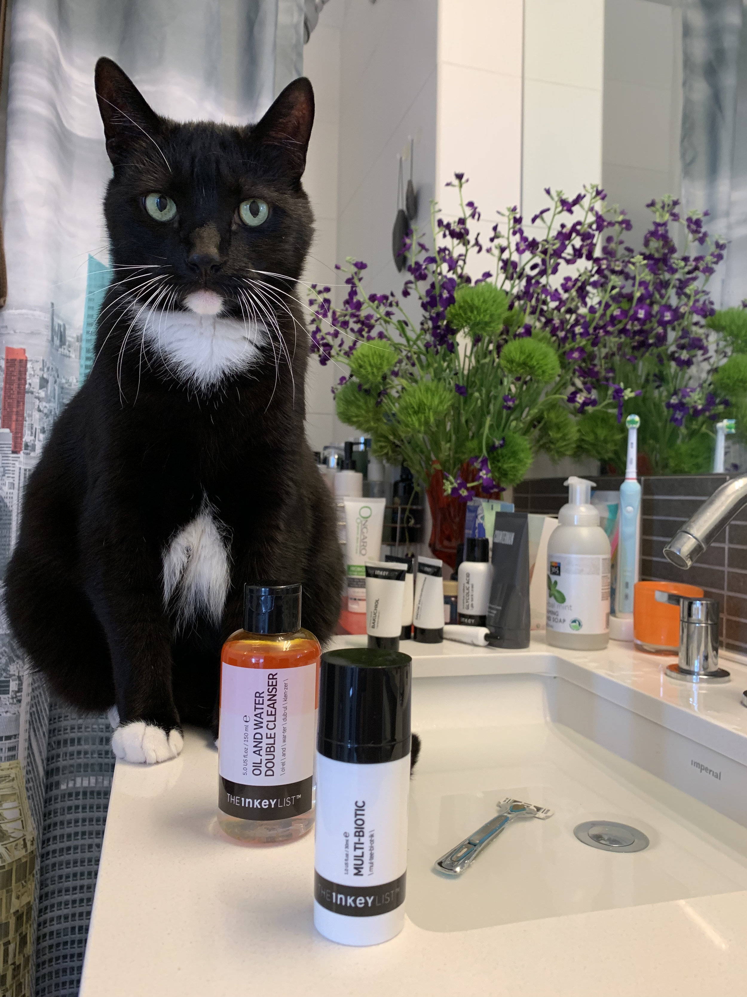 Orpheus wonders which products are best for his feline skin.