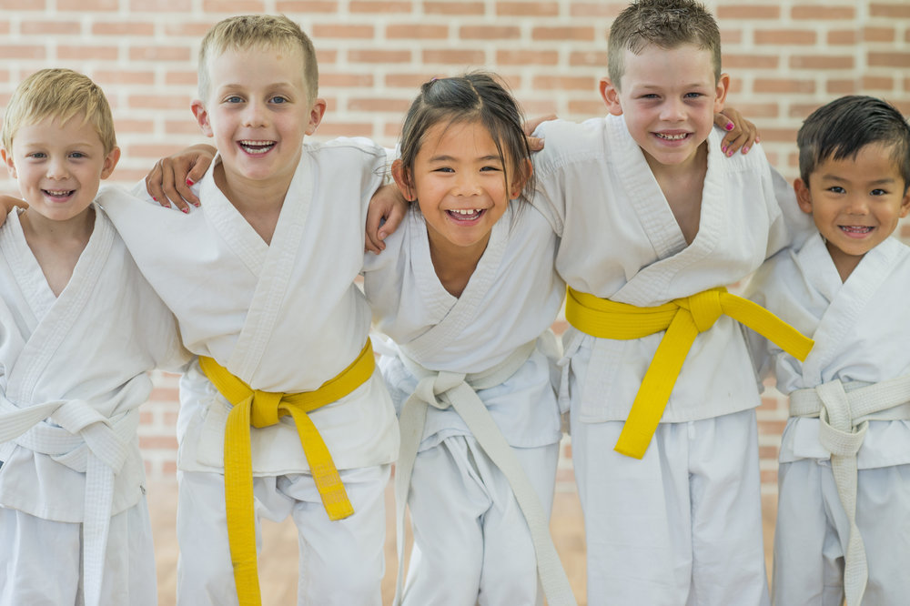 Karate classes for kids - all skill levels welcome.