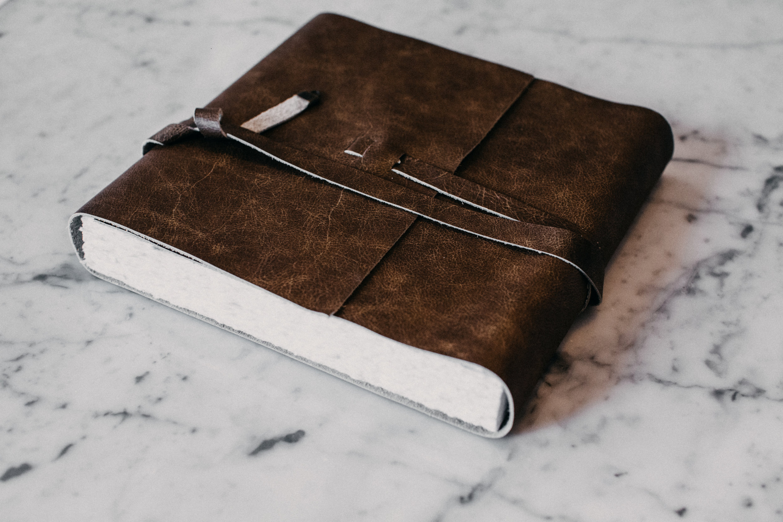 Journal Artbook Hazelnut (2).jpg