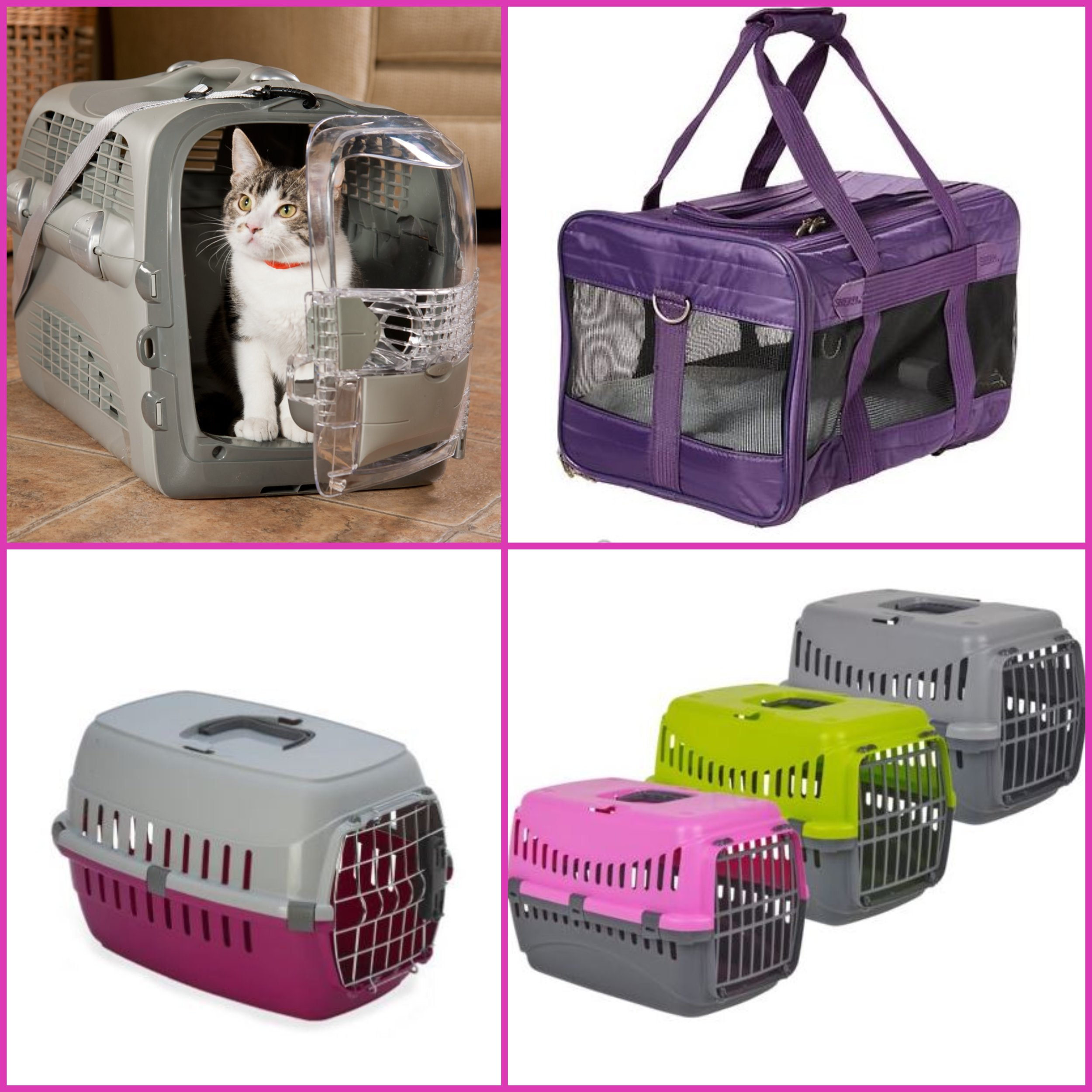 Types of Cat Carriers