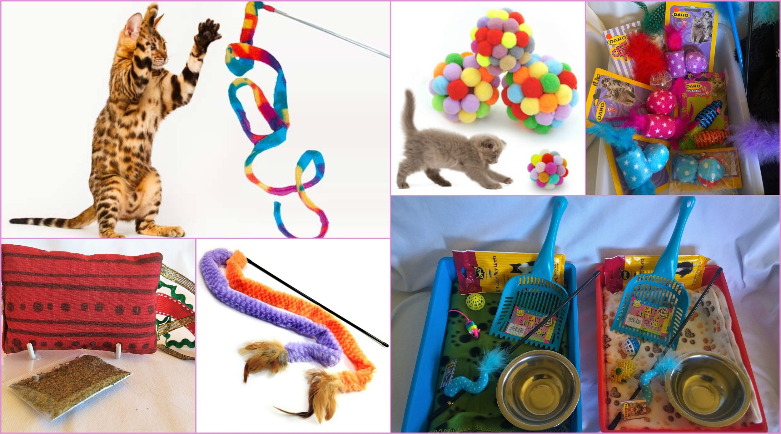 Selection of Cat Toys. We have most of these, or similar items available.
