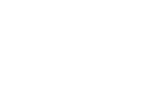 Sue Terry Voices - Wide - White - Logo.png