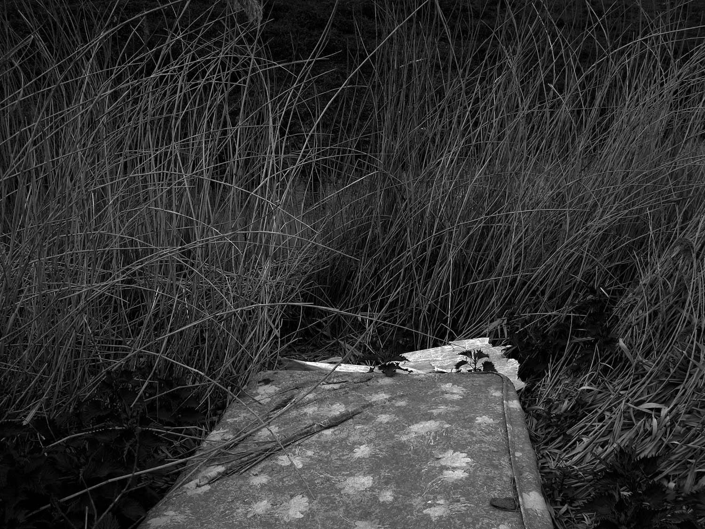 3 - Riverbed Stories.jpg