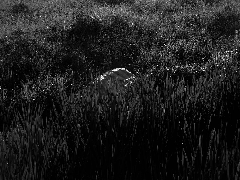 10 - Riverbed Stories.jpg