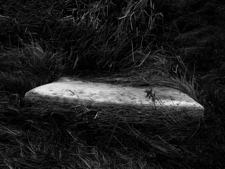 1 - Riverbed Stories.jpg