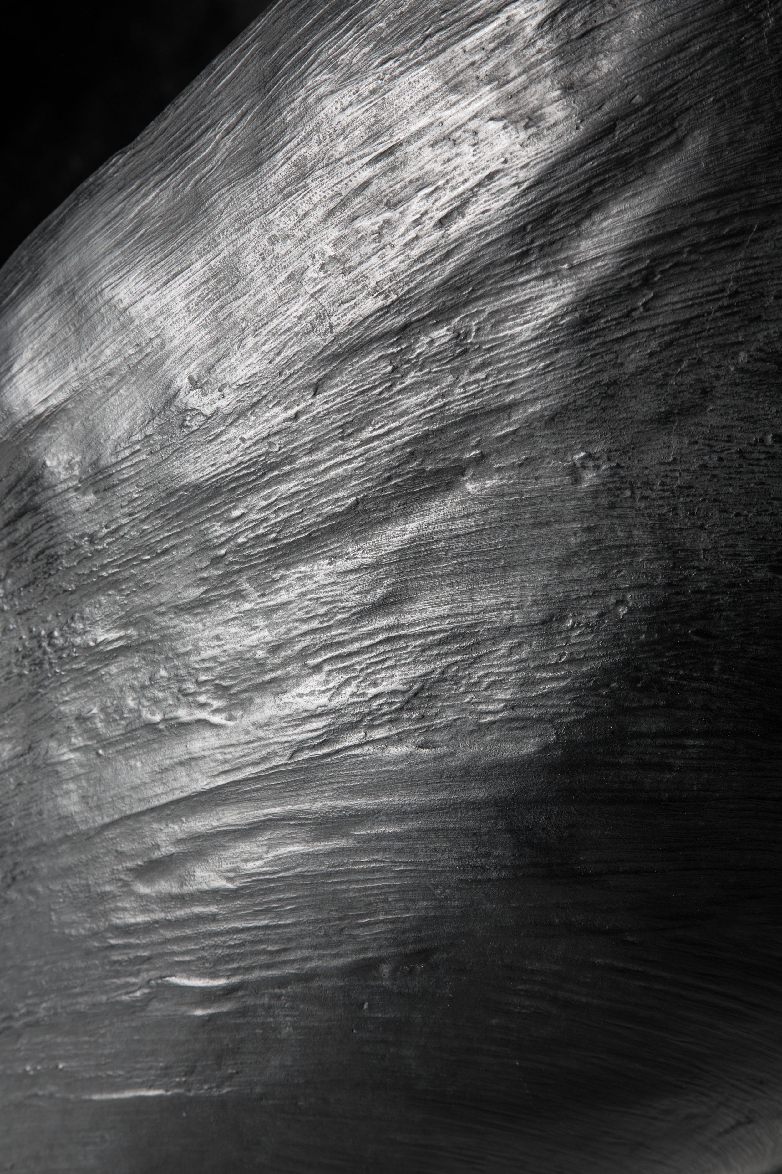 Medio tutissimus ibis (détail)