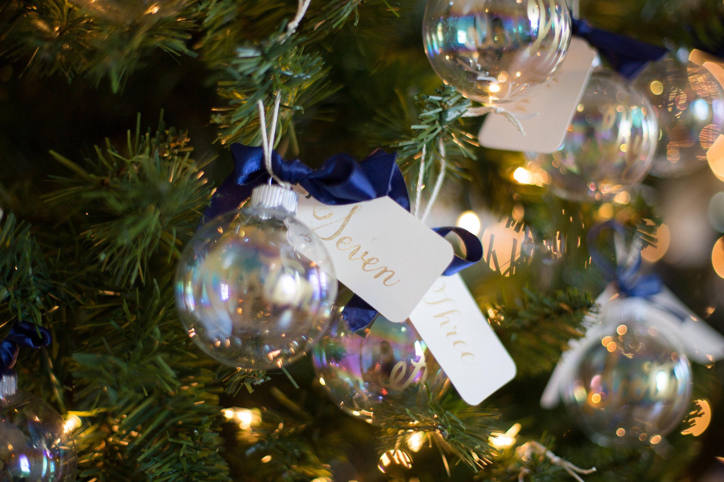 034c3-christmastreeornamentescortsraleighwinterweddingchristmastreeornamentescortsraleighwinterwedding.jpg