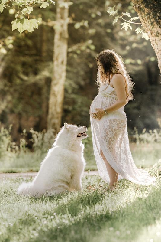 Séance grossesse avec son chien en Haute Vienne