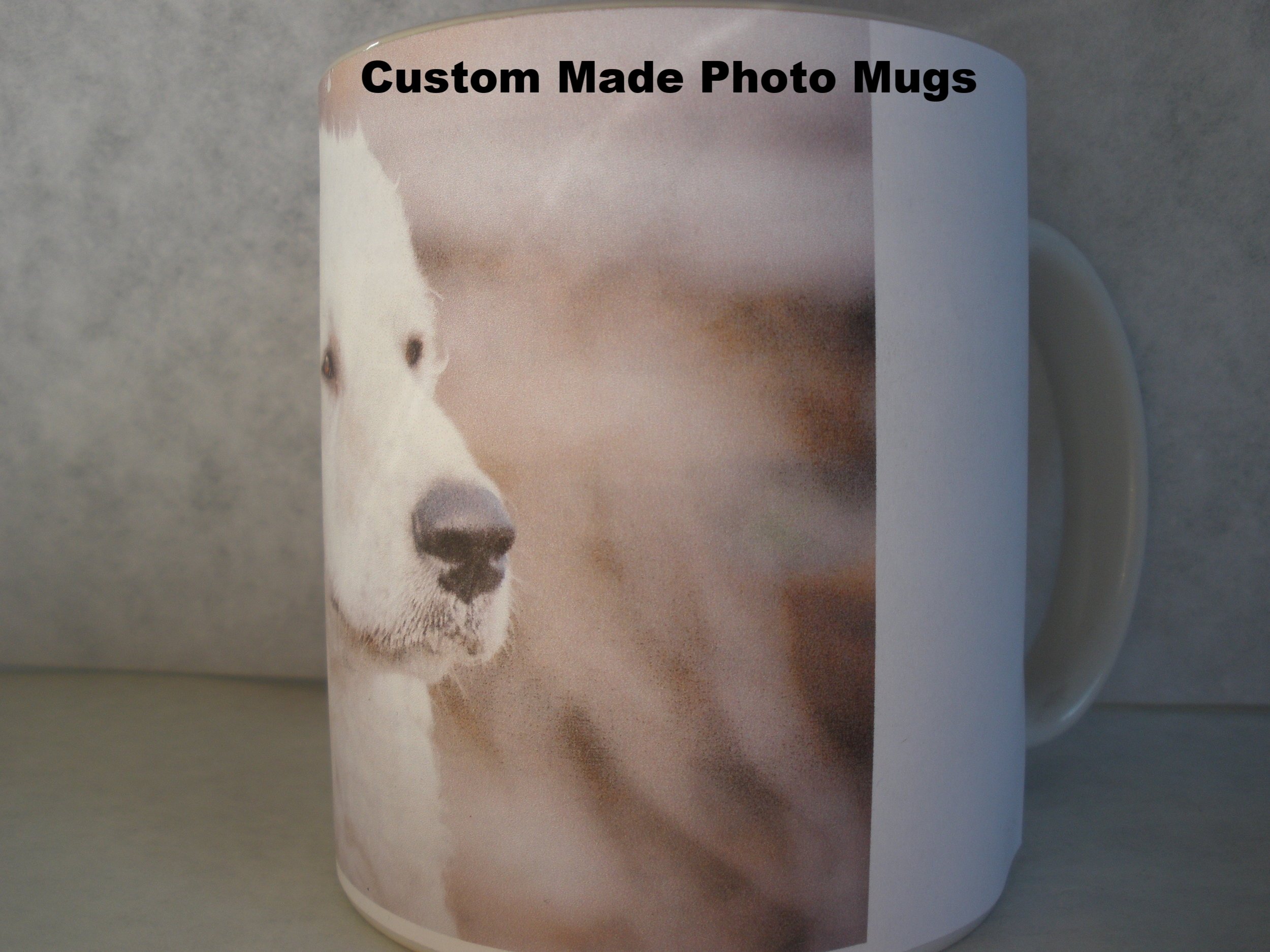 dog photo coffee mugs 011.JPG