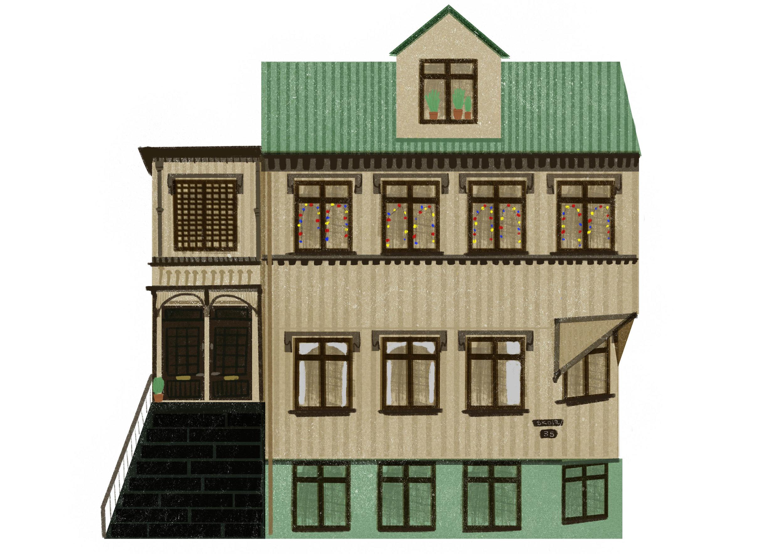iceclandic_house_flat.jpg
