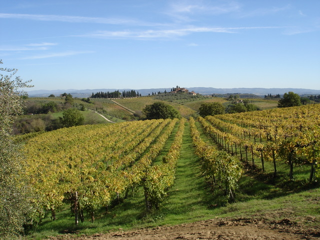 Tuscany in the Fall