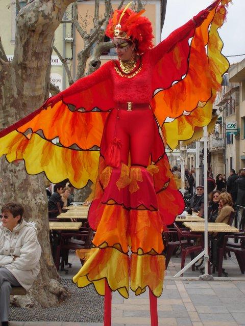 Papillion, Aigue Morte, France