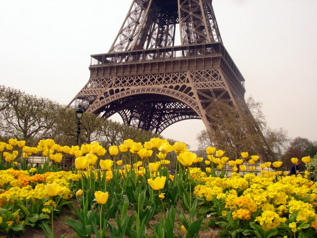 La Tour d' Eiffel