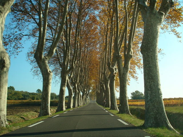 Magical Road Uzes, France