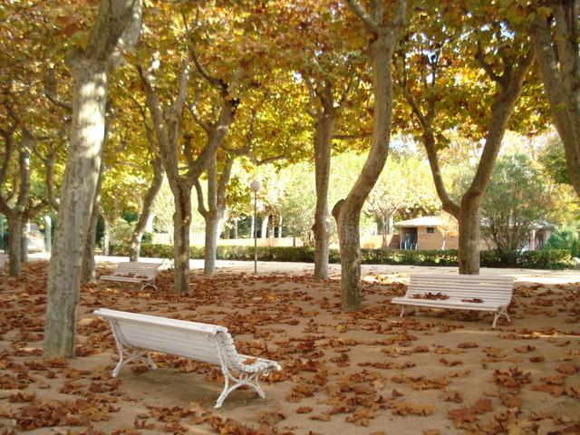 Autumn in the Park, Spain