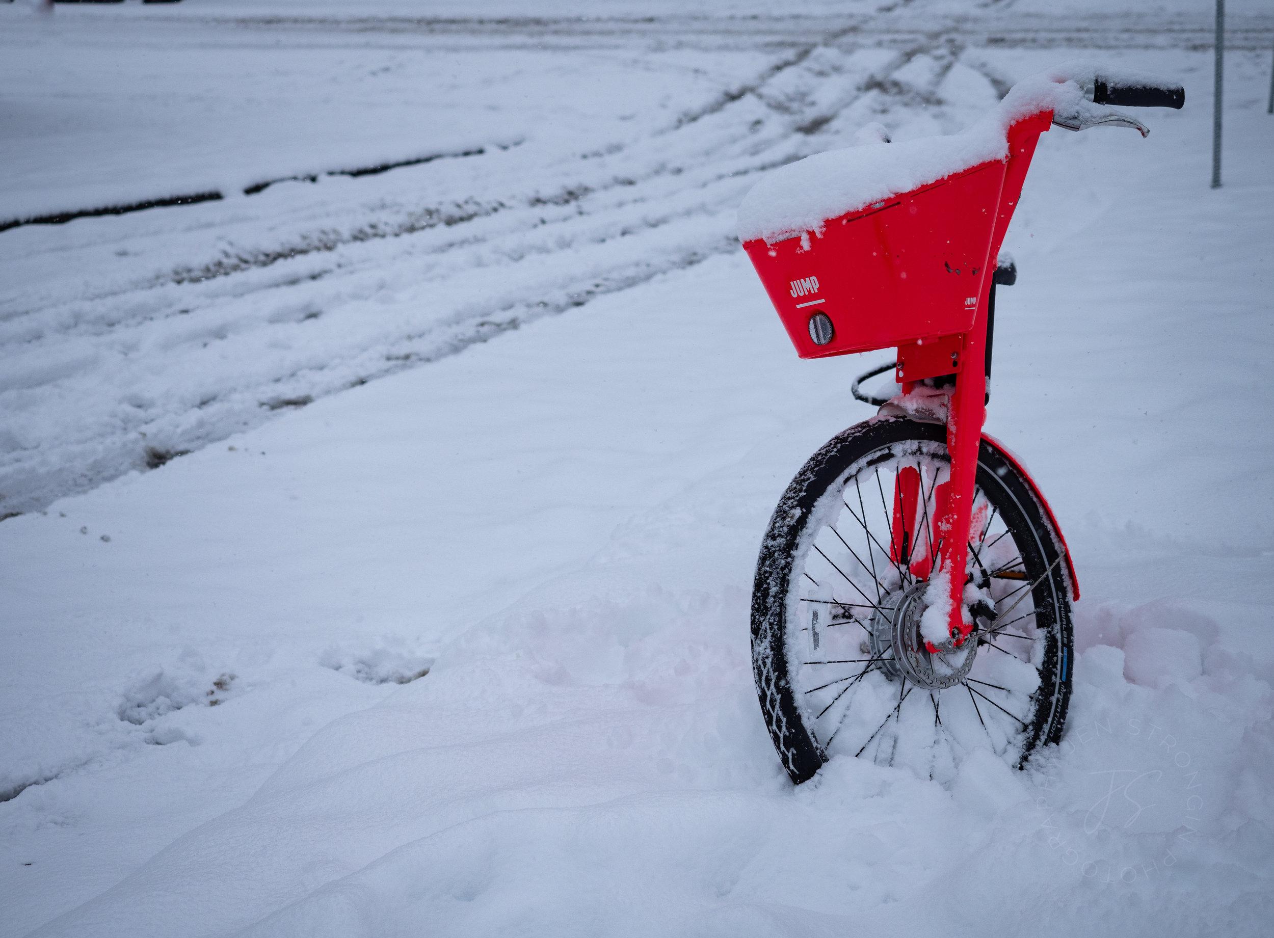 snowblog11.jpg