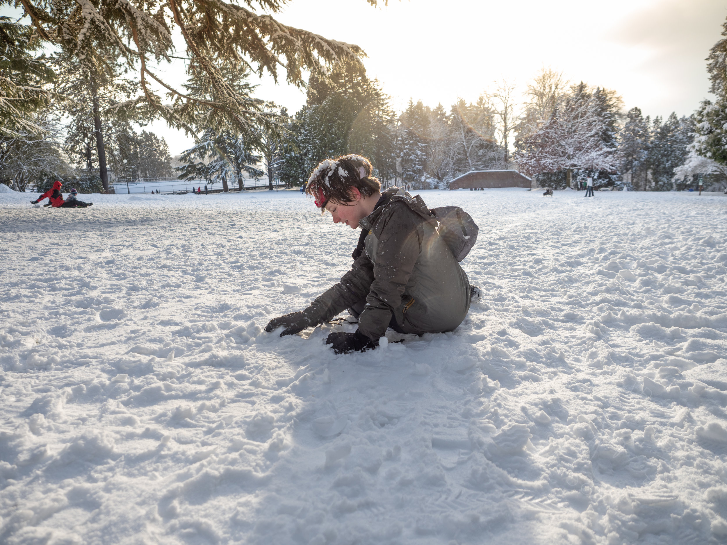 snow scene2.jpg