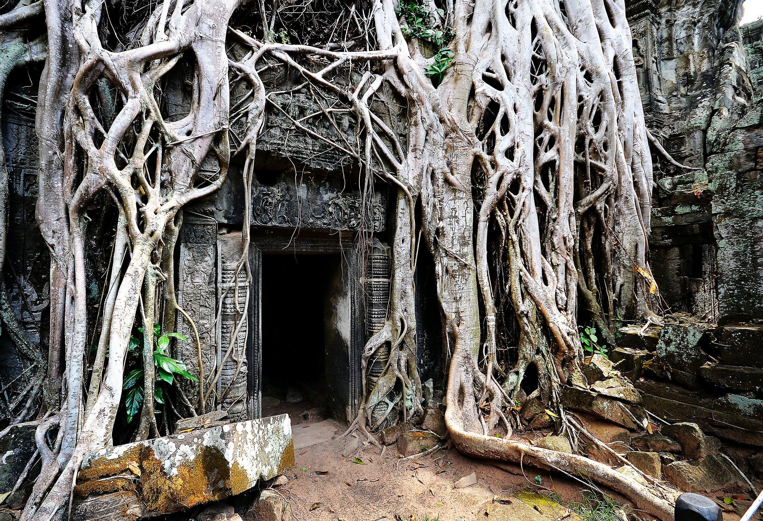 El arte y la naturaleza se trenzan en Ta Prohm, otro escenario de película.