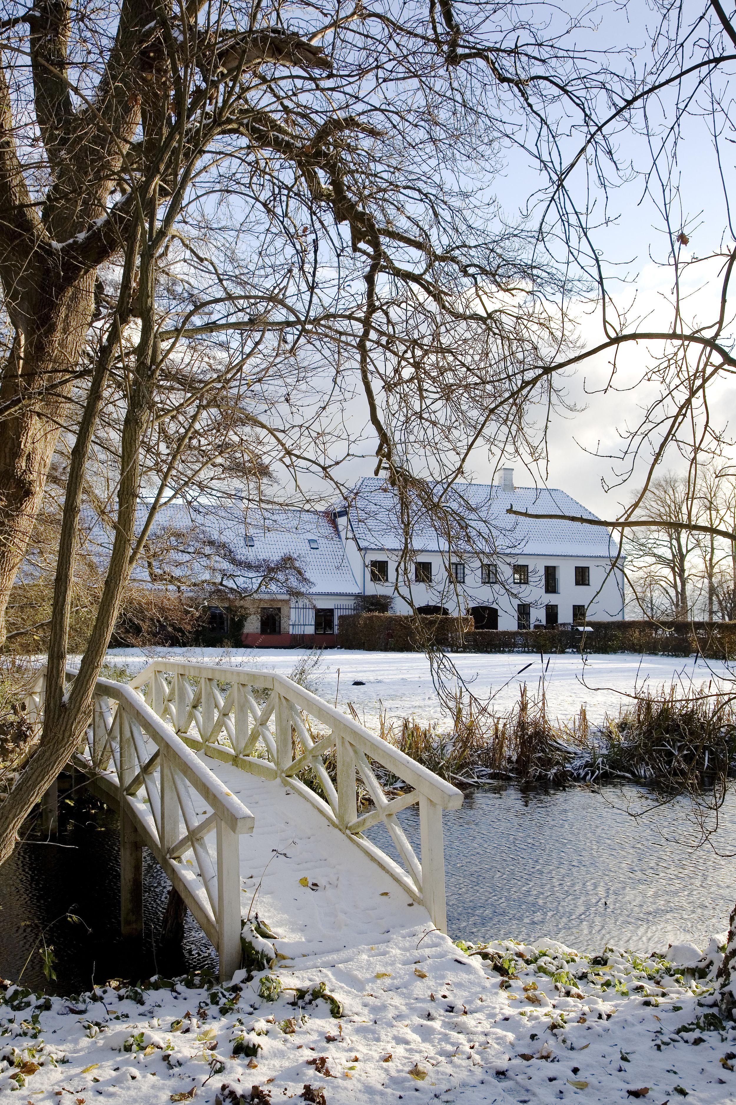 Vinter. Foto K.R. Hoppe.jpg