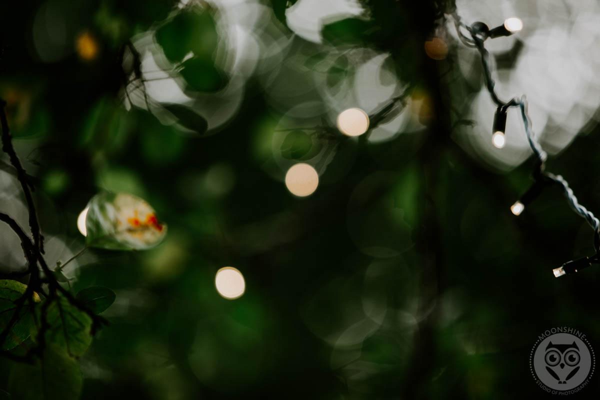 MoonshineStudio-2088.jpg