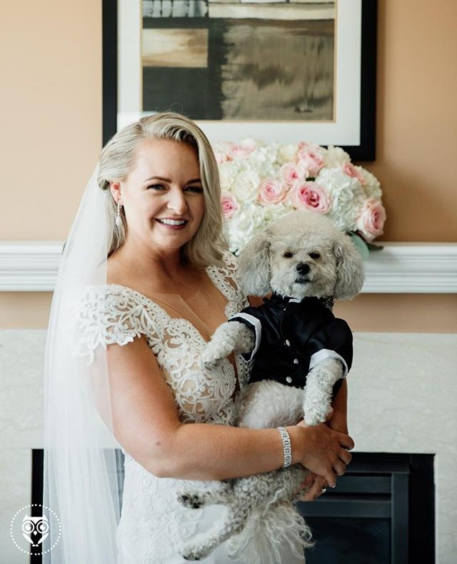 �You guys.... Look!! It's a dog in a TUXEDO! 😜 What a stud. � .� Photographed by Katie Africano� .� .� .� .� .� .� #stylemepretty #greenweddingshoes #aisleperfect #theknot #huffpostido #marthastewartweddings #harperbazaarweddings #weddingphotographyinspiration #buzzfeedweddings #katieafricanophoto #tribearchipelago #buffalove #buffaloweddings