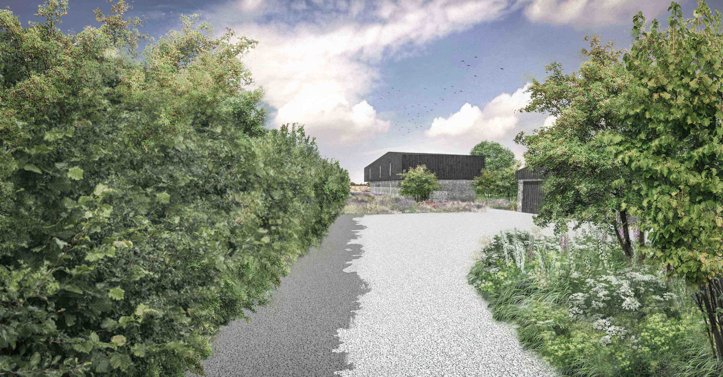 country garden driveway mixed hedgerow modern architecture ornamental meadow.jpg