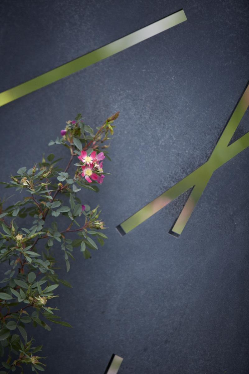 Colm Joseph RHS Chelsea rosa glauca steel screen modern garden design.jpg